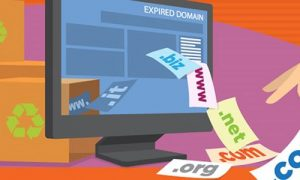 Domain Name Expiry