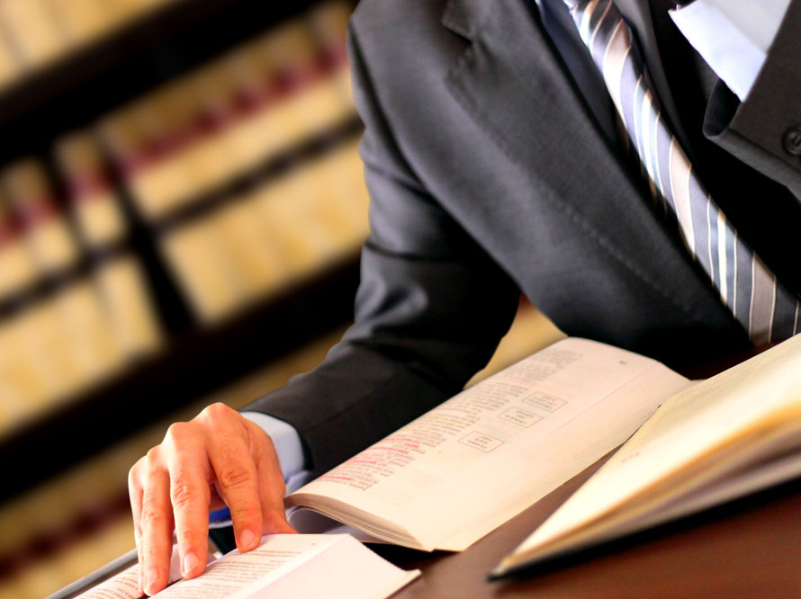 litigation service providers