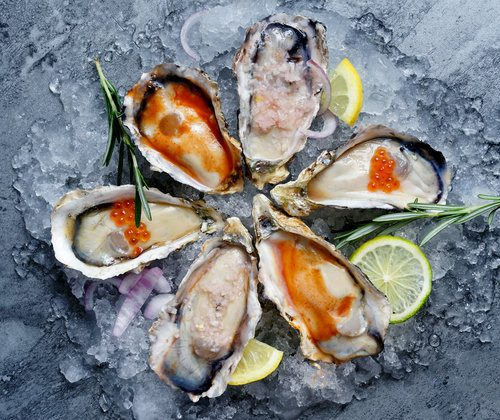 where to buy oyster in singapore